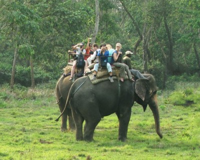 Chitwan Wildlife Tour